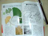 Jyumokuhon6
